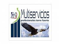MULTISERVICIOS PROFESIONALES TORRE FUERTE GQ