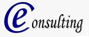 E-Consulting
