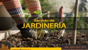 Servicio de Jardinería    Servicios de Guatemala