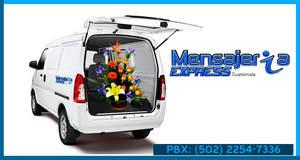 Servicio de Panel | Picku | Camion 3 - 5 y 8 Toneladas