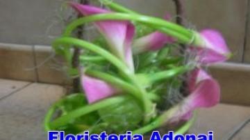 Arreglos Florales Dia Del Cariño En Mixco Floristerías En